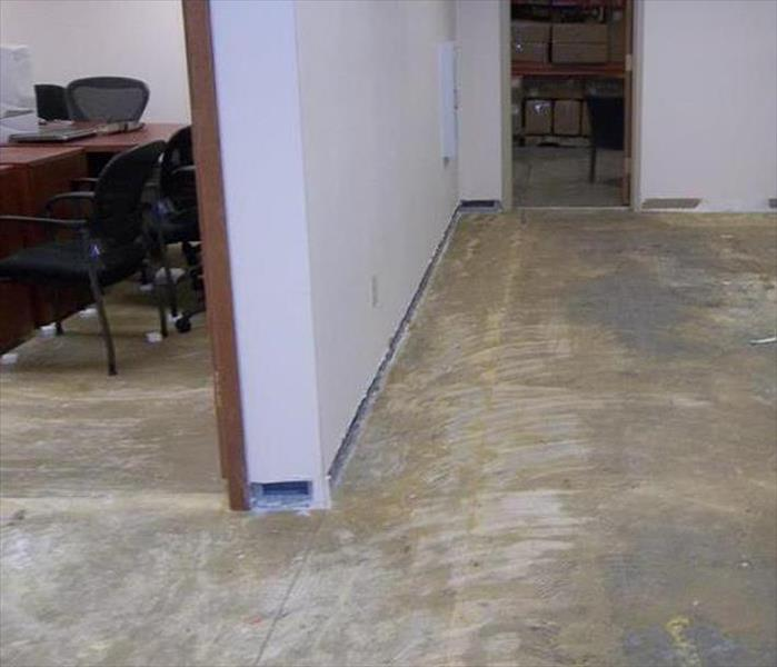 same view, carpet removed, concrete floor exposed and dry, removed drywall