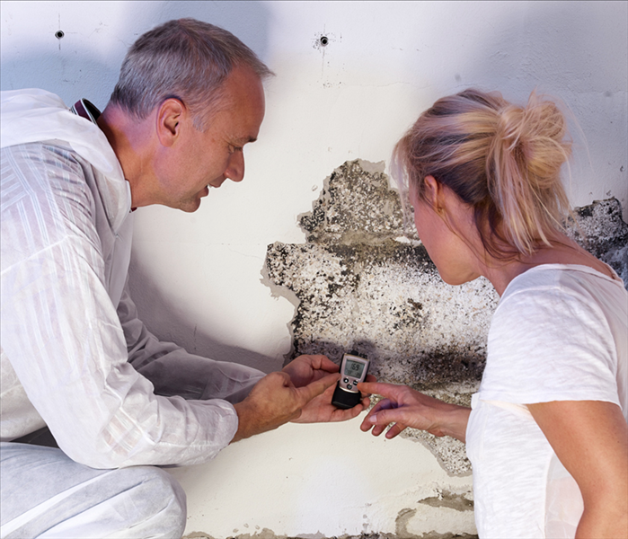2 people viewing mold on wall