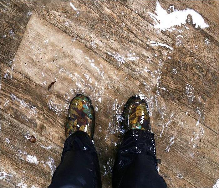 Waterproof Boots, Standing in a Flooded House with Vinyl Wood Floors