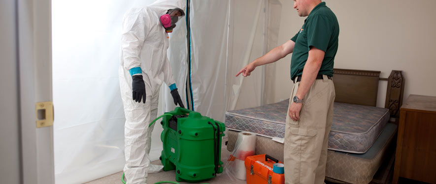 Tallahassee, FL mold removal process